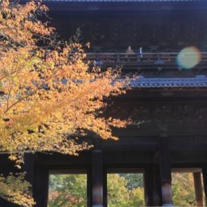 11/8南禅寺で初秋