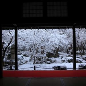 2/9京都で雪 圓光寺から法然院まで