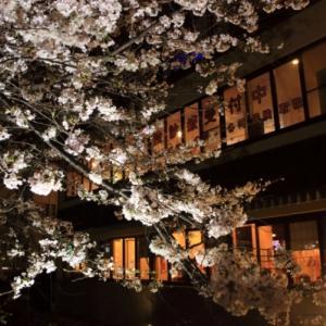 3/30桜巡り 高瀬川