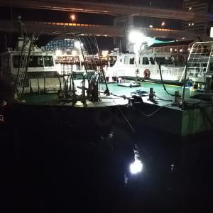 久々釣行はいつもの神戸港