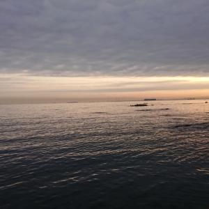 横須賀大津でボート釣り2021-②