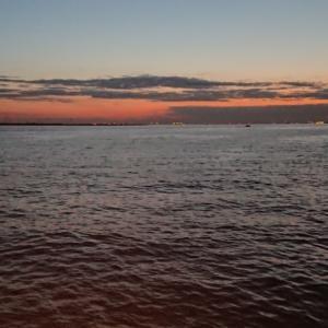横須賀大津でボート釣り2021―④
