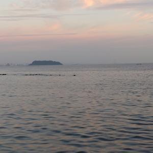 横須賀大津でボート釣り2021―⑦