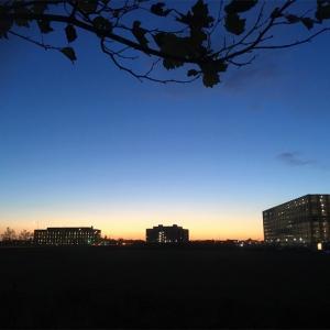 ワーホリで来た私がイギリスの大学院に合格するまで。