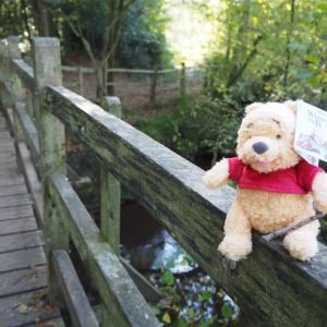 プーさんの橋に行きました。