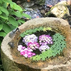 鎌倉一条恵観山荘の紫陽花と新緑