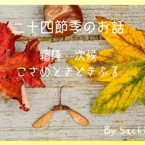霎時施(コサメトキドキフル)
