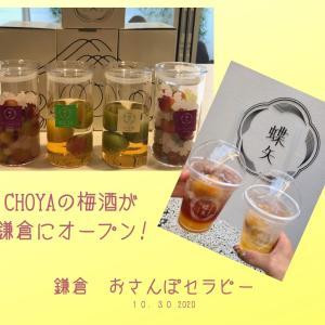 蝶矢 鎌倉店 手作り梅酒作れます