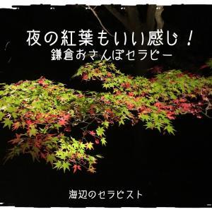 静かな夜の鎌倉もいいです。
