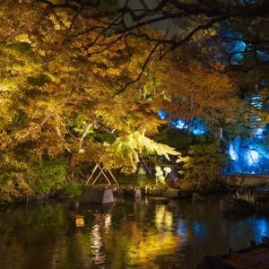 鎌倉 長谷寺の紅葉ライトアップ2019