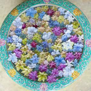 一条恵観山荘の紫陽花