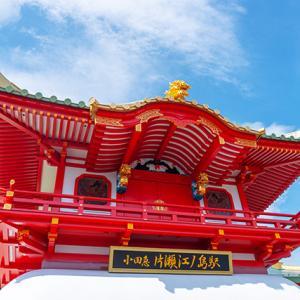片瀬江ノ島駅はクラゲのいる竜宮城