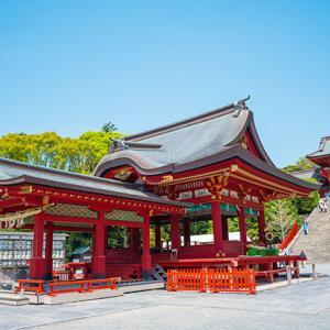 鶴岡八幡宮の白藤