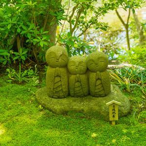 鎌倉・長谷寺の新緑