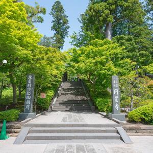 新緑の円覚寺