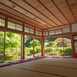 長寿寺の新緑