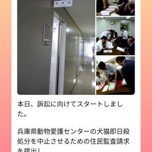 兵庫県殺処分センター