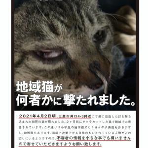 三鷹市 猫虐待事件!