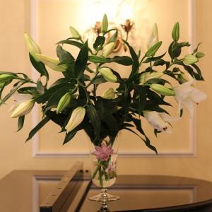 教室のサロンに飾られたお花たちとそのそばで流れる名曲の数々