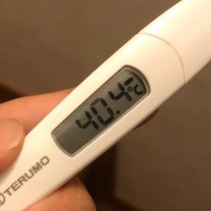 また!!✳︎息子、高熱で倒れる。
