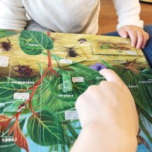 お篭りGW✳︎4歳児が集中して取り組んだ遊び。