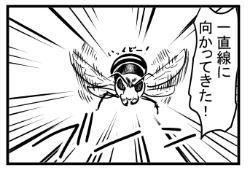 【漫画日誌】日常 スズメバチに遭遇 1匹