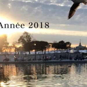 謹賀新年 Bonne Année 2018