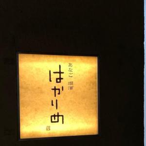 今日のランチ「銀座 はかりめ」あなご丼,「ピエール・マルコリーニ」チョコレートパフェ, 銀座       Today's Lunch「Hakarime, Anago don」, Cafe「Pierre Marcolini, Chocolat parfait」, Ginza, Tokyo, Japan.