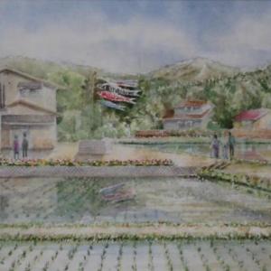五月の里山風景 1905