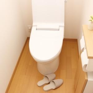 【悲報】突然!トイレの水が流れなくなった件。【2019秋】