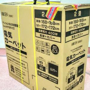 【うさぎの冬対策】12年ぶりに電気カーペットを購入。【うさぎと人】【2019秋】
