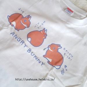 【うさぎと人】アラフィフ、うさぎTシャツ購入。【ミニマリスト】【2020夏】