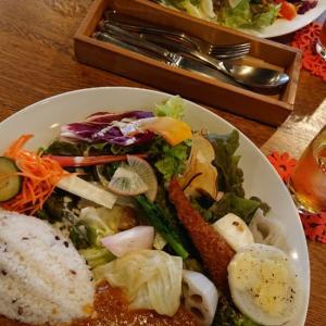 菜園Rojiテーブルで野菜たっぷりランチ♪@つくば市上ノ室
