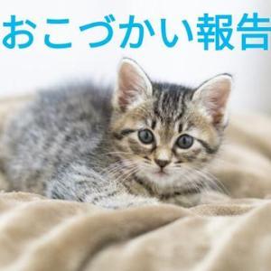 【お小遣い報告11月①】