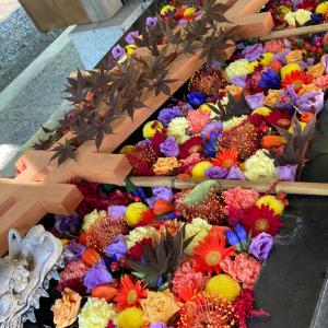 帯広神社、9/25、例祭の花手水~MIYUKI~