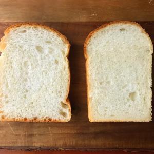 食パン比べ
