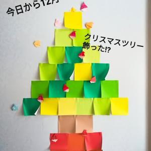 今日から12月!クリスマスツリーは飾りましたか?
