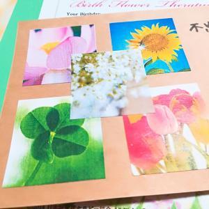 お花からのメッセージだから癒されるし、改善点もイヤーな気分になりません!