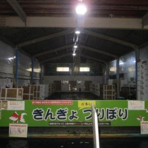 7月5日の釣果と月曜日は12時からオープン。