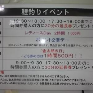 2月20日の釣果と金曜日はこども券1時間500円の「金太郎の日」。