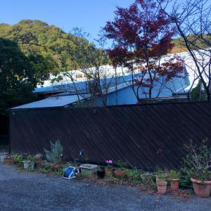 Gallery Court Ofa atu(ギャラリーコート「オファ・アトゥ」)夕食フルコース【ステーキ(=゚ω゚)ノ1泊2食8000円~】