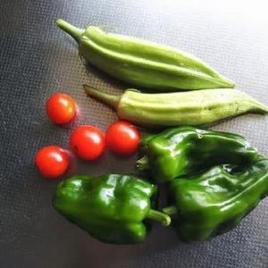 収穫あり。