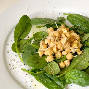 【キッチン菜園】栄養たっぷり! スプラウトを育てる方法 – アルファルファと発芽ひよこ豆 –