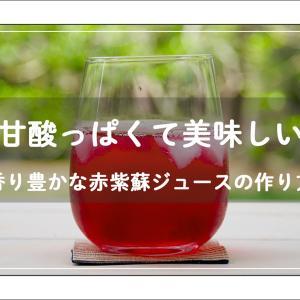 【動画】紫蘇ジュースと紫蘇醤油の作り方 – 収穫から保存まで –