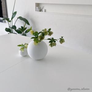 花のある暮らし★庭のクリスマスローズを剪定→ダイニングへ