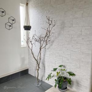 玄関改造中!下駄箱撤去→壁紙貼りに向けて壁面下処理と木蓮