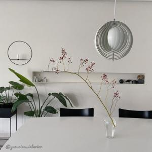 雰囲気のあるインテリアに…野ばらの実の枝物とガラス花瓶