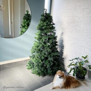 今年もコレ!楽天で買ったド迫力クリスマスツリー