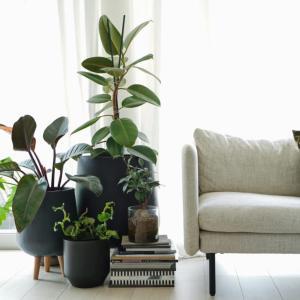 DIYした植物棚を撤去!生まれ変わったリビングインテリア
