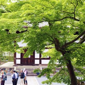 京都の人気観光地・古き良き日本を感じる【京都・嵐山】の旅!PART1